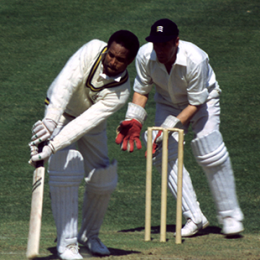 garry sobers bat